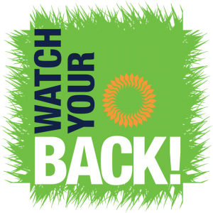 We're supporting the 'Watch your Back' skin cancer campaign